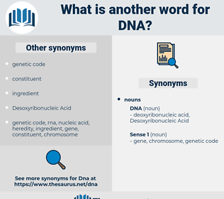 dna, synonym dna, another word for dna, words like dna, thesaurus dna