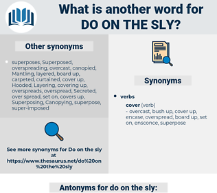 do on the sly, synonym do on the sly, another word for do on the sly, words like do on the sly, thesaurus do on the sly