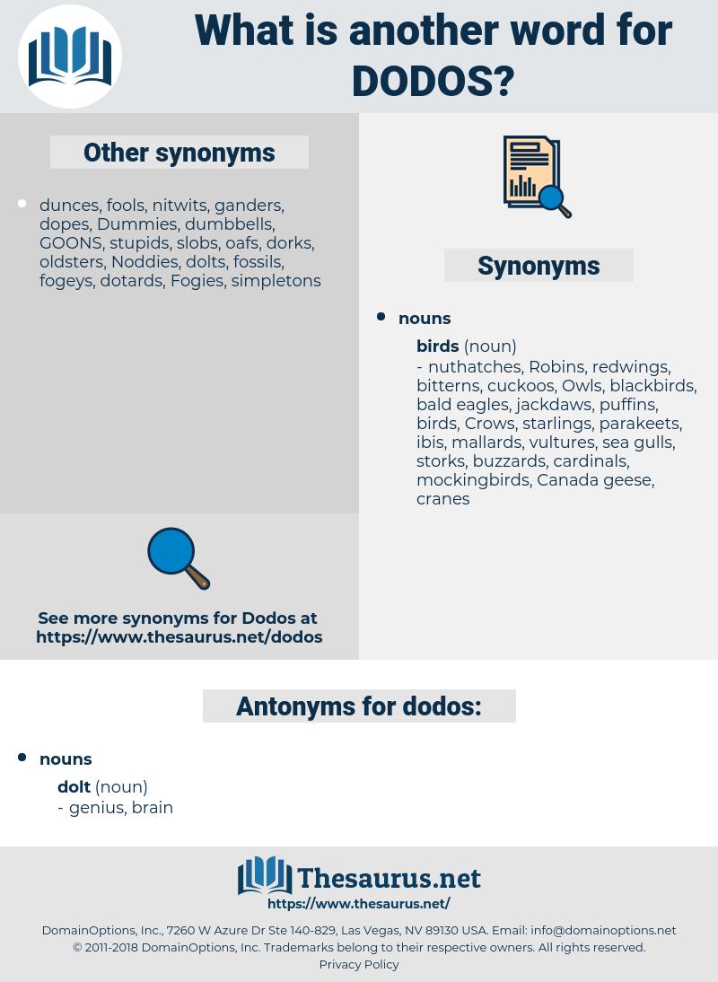 dodos, synonym dodos, another word for dodos, words like dodos, thesaurus dodos