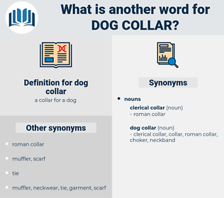 dog collar, synonym dog collar, another word for dog collar, words like dog collar, thesaurus dog collar