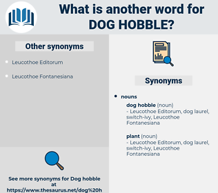 dog hobble, synonym dog hobble, another word for dog hobble, words like dog hobble, thesaurus dog hobble