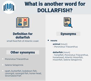 dollarfish, synonym dollarfish, another word for dollarfish, words like dollarfish, thesaurus dollarfish