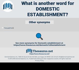 domestic establishment, synonym domestic establishment, another word for domestic establishment, words like domestic establishment, thesaurus domestic establishment