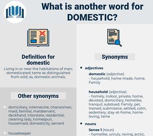 domestic, synonym domestic, another word for domestic, words like domestic, thesaurus domestic