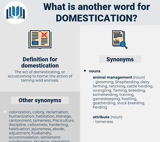 domestication, synonym domestication, another word for domestication, words like domestication, thesaurus domestication