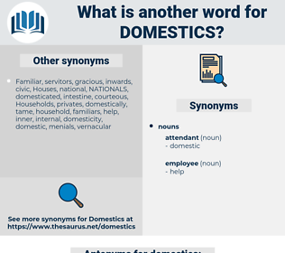 domestics, synonym domestics, another word for domestics, words like domestics, thesaurus domestics