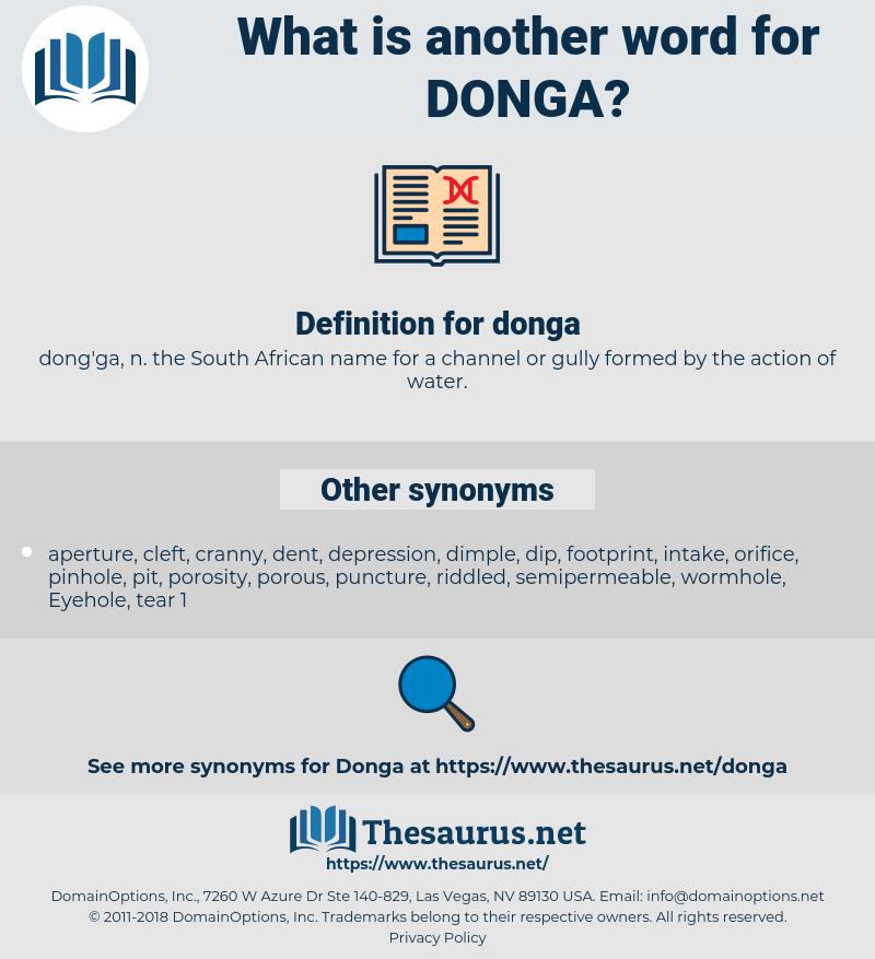 donga, synonym donga, another word for donga, words like donga, thesaurus donga