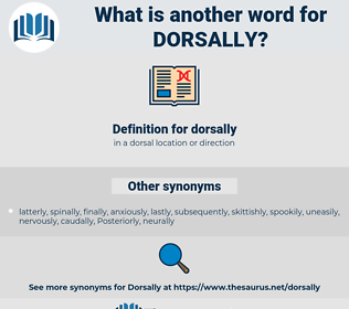 dorsally, synonym dorsally, another word for dorsally, words like dorsally, thesaurus dorsally