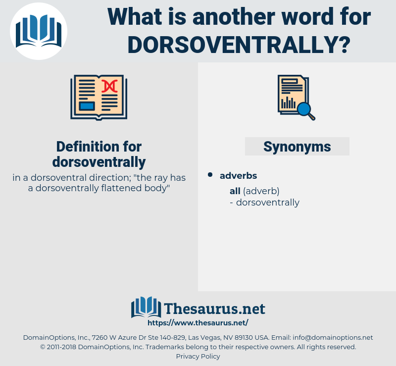 dorsoventrally, synonym dorsoventrally, another word for dorsoventrally, words like dorsoventrally, thesaurus dorsoventrally
