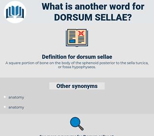 dorsum sellae, synonym dorsum sellae, another word for dorsum sellae, words like dorsum sellae, thesaurus dorsum sellae