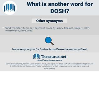 DOSH, synonym DOSH, another word for DOSH, words like DOSH, thesaurus DOSH