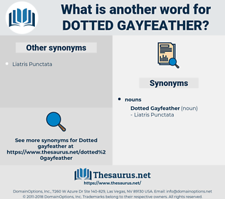 Dotted Gayfeather, synonym Dotted Gayfeather, another word for Dotted Gayfeather, words like Dotted Gayfeather, thesaurus Dotted Gayfeather
