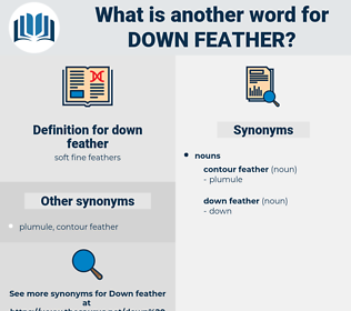 down feather, synonym down feather, another word for down feather, words like down feather, thesaurus down feather