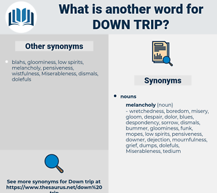 down trip, synonym down trip, another word for down trip, words like down trip, thesaurus down trip