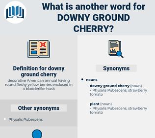 downy ground cherry, synonym downy ground cherry, another word for downy ground cherry, words like downy ground cherry, thesaurus downy ground cherry