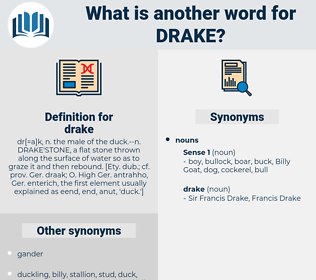 drake, synonym drake, another word for drake, words like drake, thesaurus drake