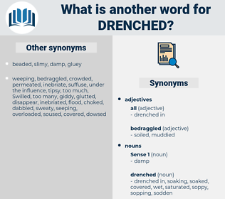 drenched, synonym drenched, another word for drenched, words like drenched, thesaurus drenched