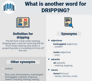 dripping, synonym dripping, another word for dripping, words like dripping, thesaurus dripping