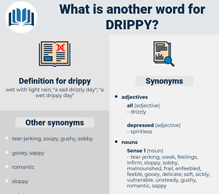 drippy, synonym drippy, another word for drippy, words like drippy, thesaurus drippy