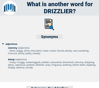 drizzlier, synonym drizzlier, another word for drizzlier, words like drizzlier, thesaurus drizzlier