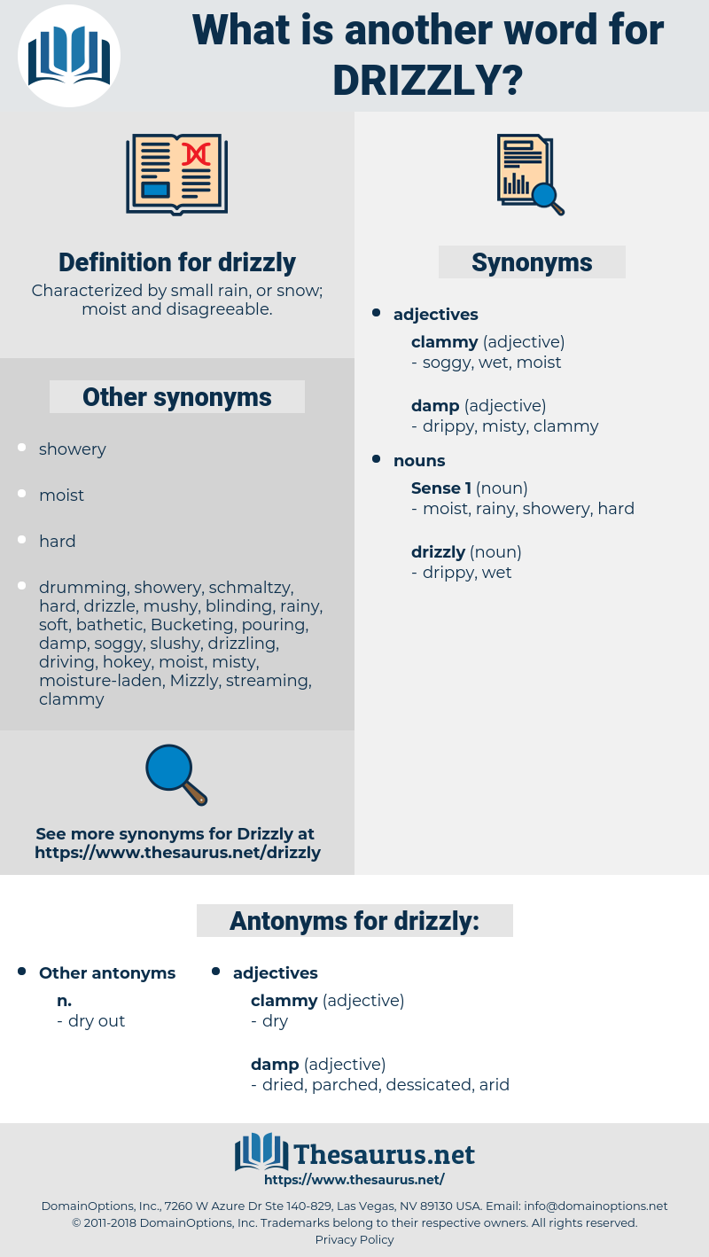 drizzly, synonym drizzly, another word for drizzly, words like drizzly, thesaurus drizzly