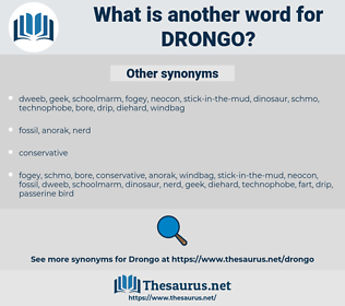 Drongo, synonym Drongo, another word for Drongo, words like Drongo, thesaurus Drongo