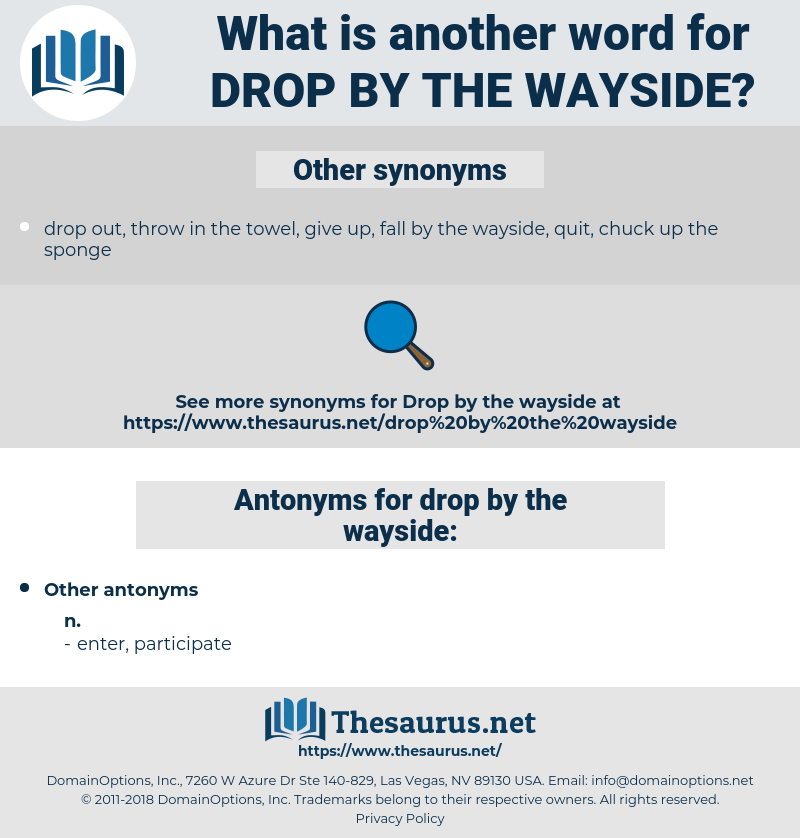 drop by the wayside, synonym drop by the wayside, another word for drop by the wayside, words like drop by the wayside, thesaurus drop by the wayside