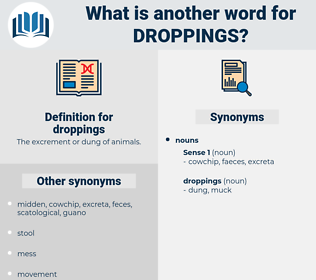 droppings, synonym droppings, another word for droppings, words like droppings, thesaurus droppings