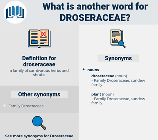 droseraceae, synonym droseraceae, another word for droseraceae, words like droseraceae, thesaurus droseraceae