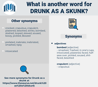 drunk as a skunk, synonym drunk as a skunk, another word for drunk as a skunk, words like drunk as a skunk, thesaurus drunk as a skunk