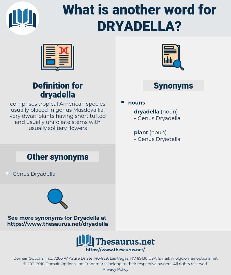 dryadella, synonym dryadella, another word for dryadella, words like dryadella, thesaurus dryadella