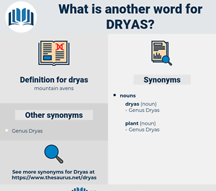 dryas, synonym dryas, another word for dryas, words like dryas, thesaurus dryas
