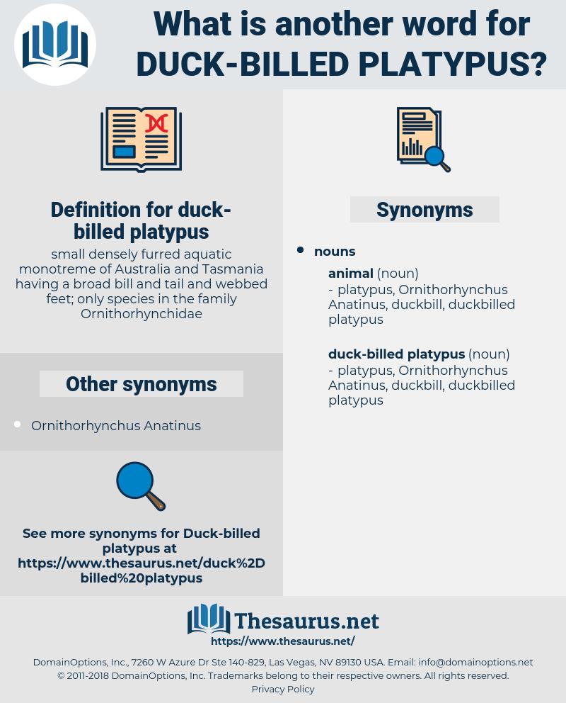 duck-billed platypus, synonym duck-billed platypus, another word for duck-billed platypus, words like duck-billed platypus, thesaurus duck-billed platypus