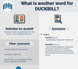 duckbill, synonym duckbill, another word for duckbill, words like duckbill, thesaurus duckbill