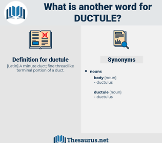 ductule, synonym ductule, another word for ductule, words like ductule, thesaurus ductule