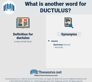 ductulus, synonym ductulus, another word for ductulus, words like ductulus, thesaurus ductulus