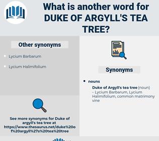 Duke Of Argyll's tea tree, synonym Duke Of Argyll's tea tree, another word for Duke Of Argyll's tea tree, words like Duke Of Argyll's tea tree, thesaurus Duke Of Argyll's tea tree