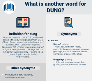 dung, synonym dung, another word for dung, words like dung, thesaurus dung