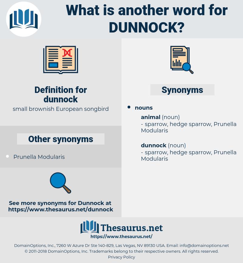 dunnock, synonym dunnock, another word for dunnock, words like dunnock, thesaurus dunnock