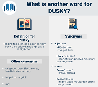 dusky, synonym dusky, another word for dusky, words like dusky, thesaurus dusky