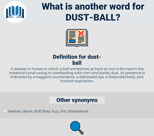 dust ball, synonym dust ball, another word for dust ball, words like dust ball, thesaurus dust ball