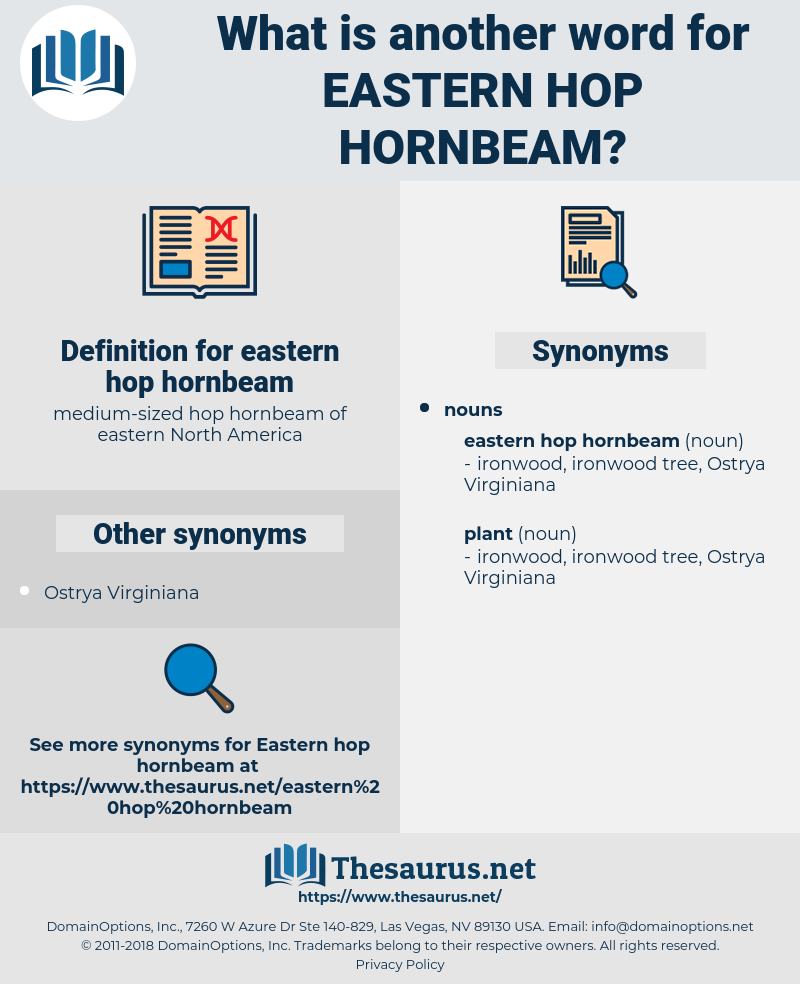 eastern hop hornbeam, synonym eastern hop hornbeam, another word for eastern hop hornbeam, words like eastern hop hornbeam, thesaurus eastern hop hornbeam