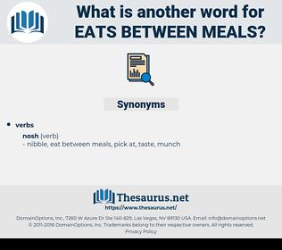 eats between meals, synonym eats between meals, another word for eats between meals, words like eats between meals, thesaurus eats between meals