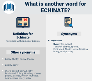 Echinate, synonym Echinate, another word for Echinate, words like Echinate, thesaurus Echinate