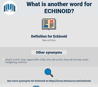 Echinoid, synonym Echinoid, another word for Echinoid, words like Echinoid, thesaurus Echinoid