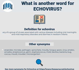 echovirus, synonym echovirus, another word for echovirus, words like echovirus, thesaurus echovirus
