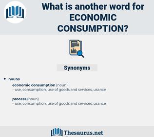 economic consumption, synonym economic consumption, another word for economic consumption, words like economic consumption, thesaurus economic consumption