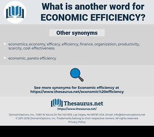 economic efficiency, synonym economic efficiency, another word for economic efficiency, words like economic efficiency, thesaurus economic efficiency