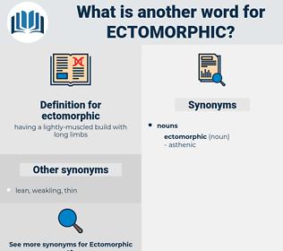 ectomorphic, synonym ectomorphic, another word for ectomorphic, words like ectomorphic, thesaurus ectomorphic