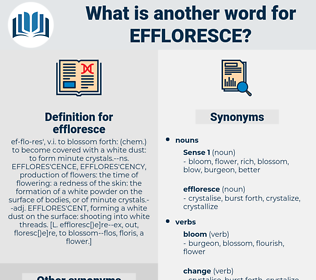 effloresce, synonym effloresce, another word for effloresce, words like effloresce, thesaurus effloresce